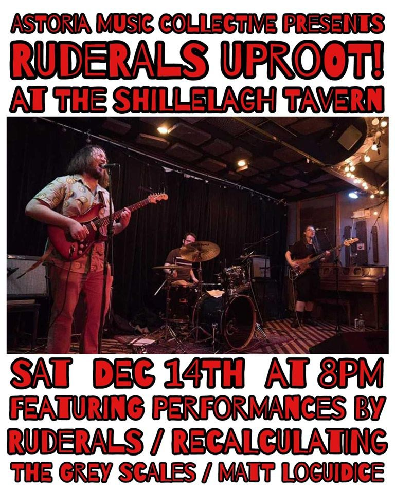 Flier, Ruderals, Recalculating, The Grey Scales and Matt Loguidice, Shillelagh Tavern, Astoria, Queens, December 14, 2019